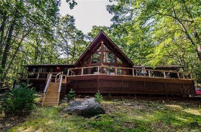 Sullivan County Single Family Home For Sale: 253 York Lake Estates Road