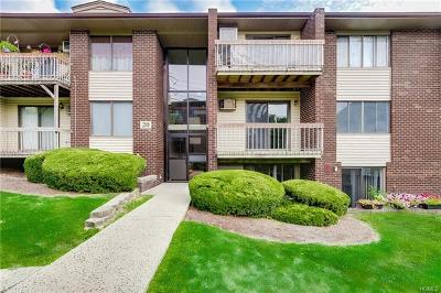 Rockland County Condo/Townhouse For Sale: 204 Country Club Lane
