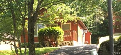 South Fallsburg NY Single Family Home For Sale: $69,000