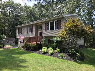 Port Jervis Single Family Home For Sale: 9 Mark Drive