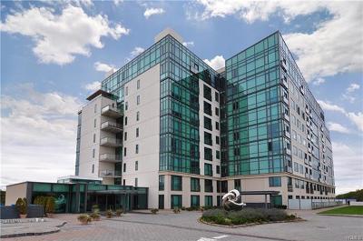 Condo/Townhouse For Sale: 701 Ridge Hill Boulevard #3G