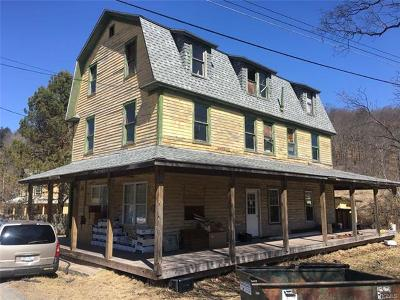 Parksville NY Single Family Home For Sale: $59,000