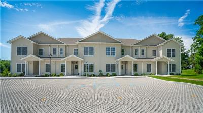 Carmel Condo/Townhouse For Sale: 1203 Pankin Drive #1203