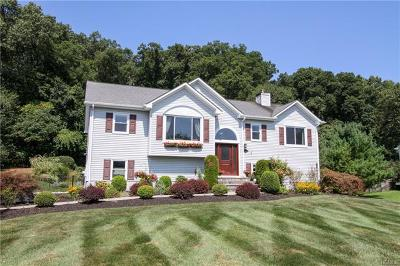 Dutchess County Single Family Home For Sale: 28 Secor Lane