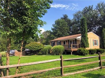 Wurtsboro Single Family Home For Sale: 17 David Lane