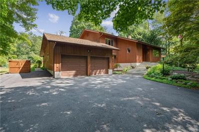 Stormville Single Family Home For Sale: 191 White Pond Road