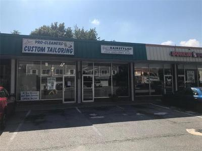 Dobbs Ferry Commercial For Sale: 3 Southfield Avenue