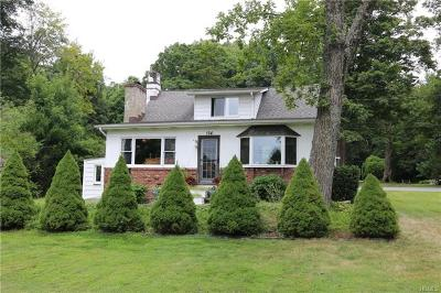 Westchester County Single Family Home For Sale: 164 Route 118
