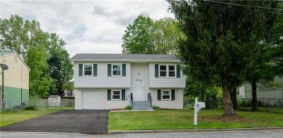 Middletown Single Family Home For Sale: 38 Dewitt Street
