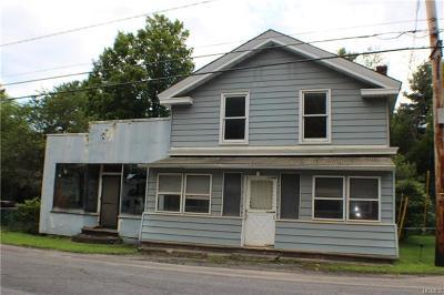 Spring Glen Single Family Home For Sale: 1385 Old Rt 209