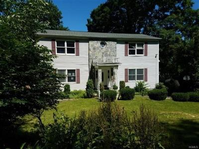 Cortlandt Manor Single Family Home For Sale: 223 Sprout Brook Road