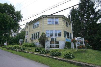 Westchester County Commercial For Sale: 7 Hill Street