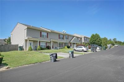 Orange County, Sullivan County, Ulster County Rental For Rent: 15 Mila Road