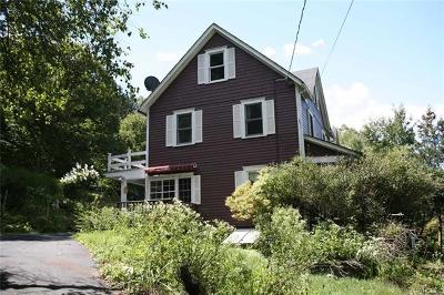 Callicoon Single Family Home For Sale: 274 Viaduct Road