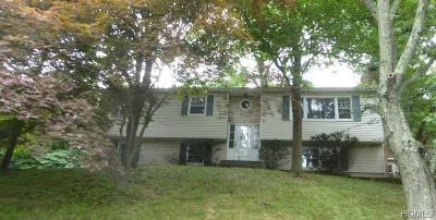 Nyack Single Family Home For Sale: 22 Broome Boulevard