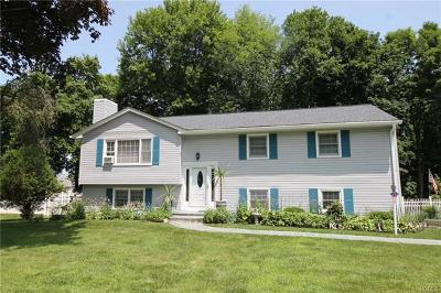 Westchester County Single Family Home For Sale: 13 Cooper Drive