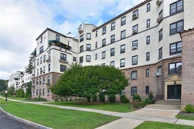 New Rochelle Co-Operative For Sale: 1273 Entrance #4 North Ave #3C