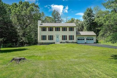 Dutchess County Single Family Home For Sale: 17 Farm View Road