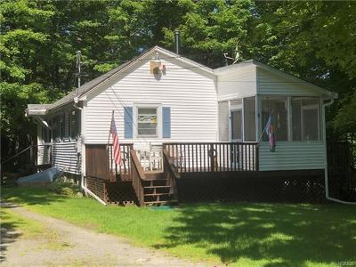 Sullivan County Single Family Home For Sale: 4 Anawanda Lake Road