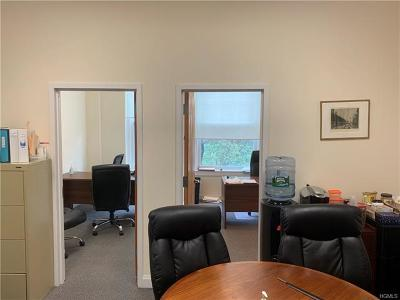 Westchester County Commercial For Sale: 66 Palmer Avenue #48