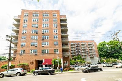 Yonkers Co-Operative For Sale: 495 Odell Avenue #3R