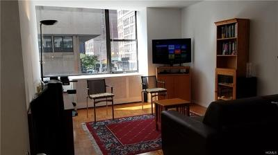 New York Condo/Townhouse For Sale: 315 7th Avenue #2B