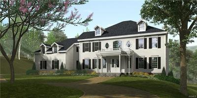 Westchester County Single Family Home For Sale: 16 Hollow Ridge Road