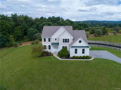 Dutchess County Single Family Home For Sale: 92 Victoria Drive