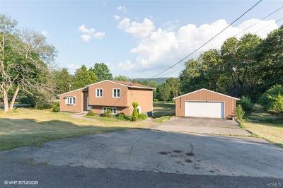 Salisbury Mills Single Family Home For Sale: 36 Highview Drive
