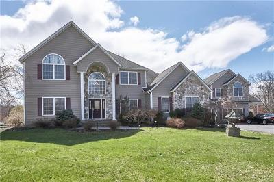 Orange County Single Family Home For Sale: 6 Victoria Drive