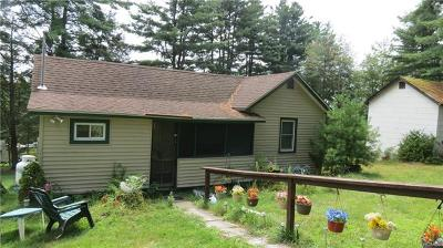 Narrowsburg NY Single Family Home For Sale: $59,999