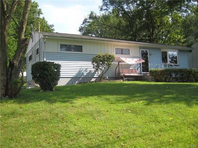 Middletown Single Family Home For Sale: 149 Wawayanda Avenue