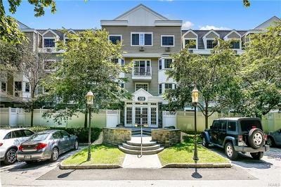 White Plains Condo/Townhouse For Sale: 500 Pondside Drive #2K