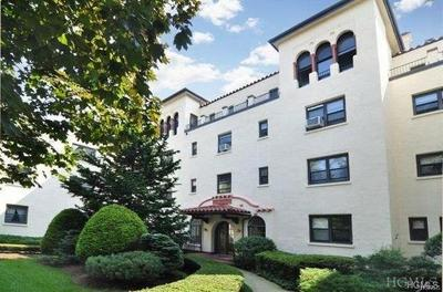 Mamaroneck Rental For Rent: 314 Livingston Avenue #103W