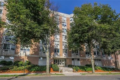 White Plains Condo/Townhouse For Sale: 14 Nosband Avenue #5E