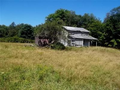 Fallsburg NY Single Family Home For Sale: $375,000