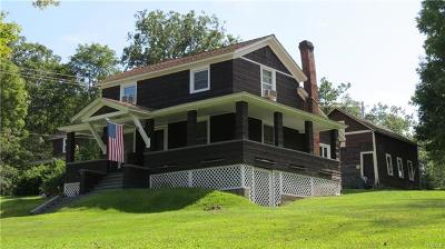 Narrowsburg NY Single Family Home For Sale: $194,000