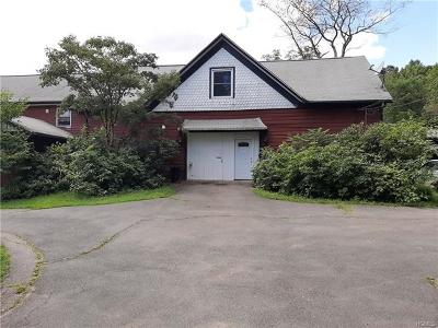 Orange County, Sullivan County, Ulster County Rental For Rent: 463 Route 209 #2