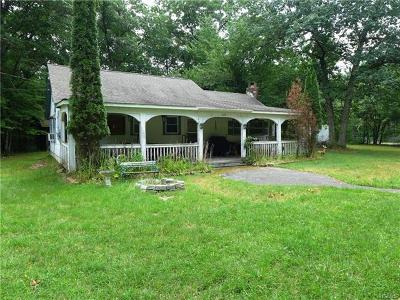Wurtsboro NY Single Family Home For Sale: $125,000
