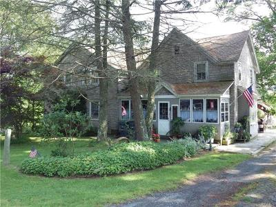 Callicoon NY Single Family Home For Sale: $375,000