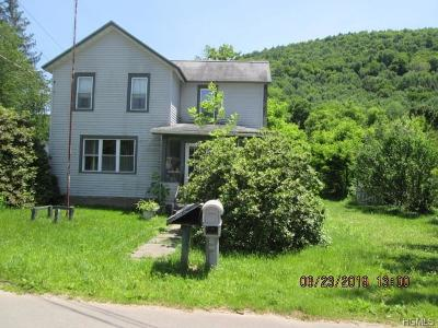 Delaware County Single Family Home For Sale: 3578 River Road