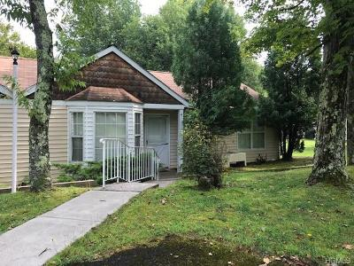 Monticello NY Single Family Home For Sale: $85,000