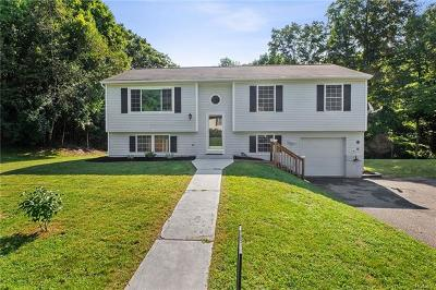 Wingdale Single Family Home For Sale: 42 Holly Hill Drive