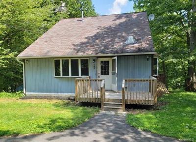 Wurtsboro Single Family Home For Sale: 134 Mt Prosper Road
