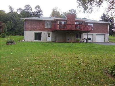 Orange County, Sullivan County, Ulster County Rental For Rent: 73 Peach Lane #B