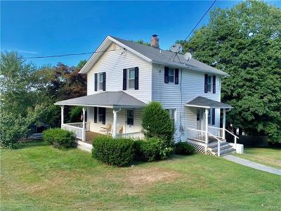 Putnam County Single Family Home For Sale: 30 McAlpin Avenue
