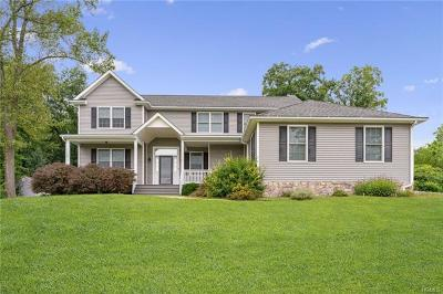 Dutchess County Single Family Home For Sale: 23 Horseshoe Path