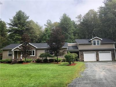 Single Family Home For Sale: 354 Old Route 17