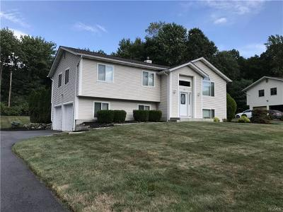 Rockland County Single Family Home For Sale: 28 Bridge Road