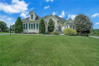 Dutchess County Single Family Home For Sale: 104 Roosevelt Drive
